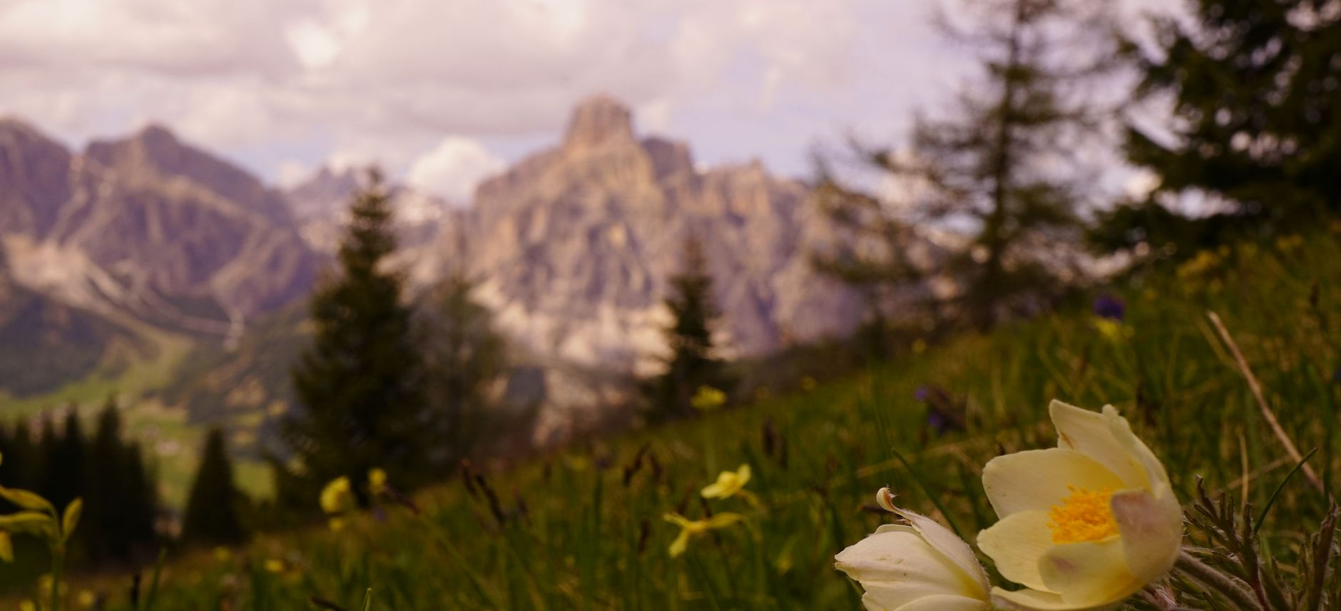 Image: Summer activities in Alta Badia